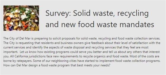 screen grab of survey