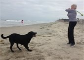 Woman playing with dog on beach